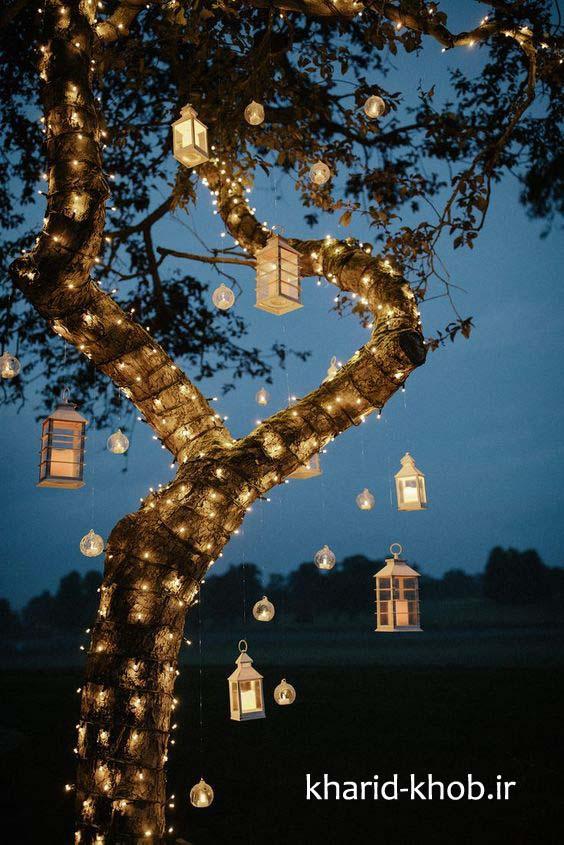 نورپردازی درخت با ریسه و فانوس