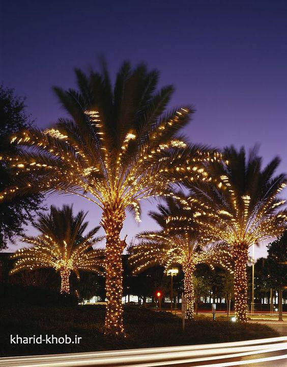 نورپردازی درختان با ریسه